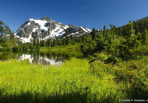 Mount Shuksan, Picture Lake, Green Meadow