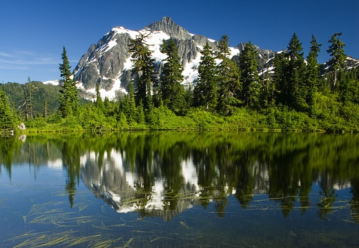 Mount Shuksan at Highwood Lake, Grassy Shore