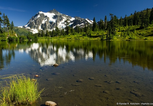 Mount Shuksan, Picture Lake, Tuft of Grass