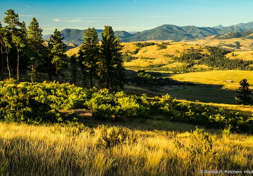 Sunrise, Grove, Hills, Methow Valley
