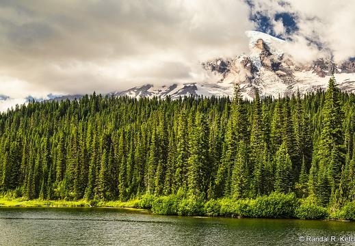 Mount Rainier, Reflection Lakes, Deep Forest, Cloudy Day