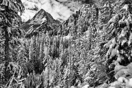 Sperry Peak, Fresh Snow, Black and White