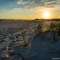 Okaloosa Island Sunset with Sea Oats