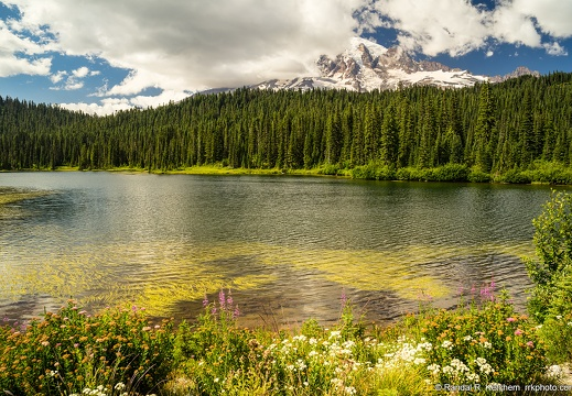 Mount Rainier, Reflection Lakes, Flowers, Cloudy Day