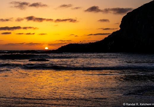 Seal Rock Sunset, Seagulls Roosting
